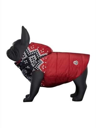 Moncler poldo dog couture x knit print jacket