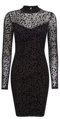 Dorothy Perkins Womens Black Mesh Heart Print Bodycon Dress, Black