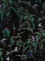 Witch & Watchman Folia Dark Wallpaper