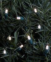 Kurt Adler Set of 50 LED Clear Lights