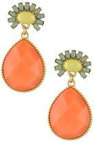 Wild Lilies Jewelry Color Burst Earrings
