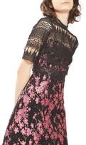 Topshop Women's Lace & Jacquard Dress