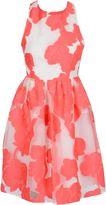 P.A.R.O.S.H. Dress