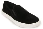 Steve Madden Ecentric - Velvet Sneaker