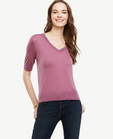 Ann Taylor Extrafine Merino Wool Short Sleeve V-Neck Sweater