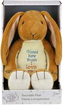 """Kids Preferred Guess How Much I Love You"""" Nutbrown Hare Recordable Plush"""