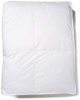 Belle Epoque Studio Down Blend Comforter (Warm)