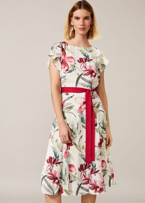 Phase Eight Carlotta Floral Dress