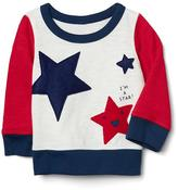 Americana crew pullover