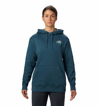 Mountain Hardwear Hotel Basecamp Pull Over Women's Hoody - M