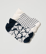 LOFT Gardenia & Stripe No Show Sock Set