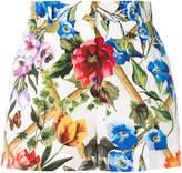 Dolce & Gabbana classic floral shorts