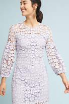 Shoshanna Vina Lace Dress