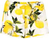 Dolce & Gabbana Shorts - Item 13101551