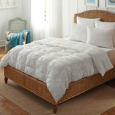 Asstd National Brand Dream CloudTM Tufted Down Alternative Comforter
