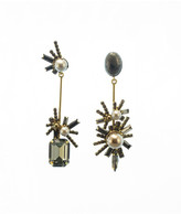 Elizabeth Cole Ashton Earrings