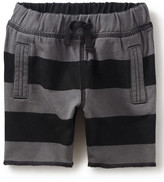Tea Collection Stripe Knit Short (Baby Boys)