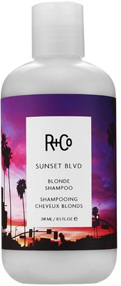 R+CO 241ml Sunset Blvd Blonde Shampoo