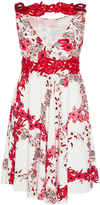 Giamba Floral Print Dress with Appliqué