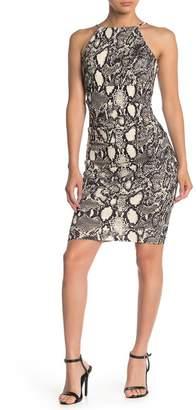 Jump Snakeskin Print Halter Sheath Dress