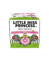Mr Men Little Miss Princess Grow Kit