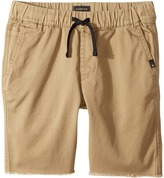 Quiksilver Fun Days Shorts Boy's Shorts