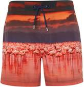 Linea Men's Swim Short With Flamingo Photographic Print