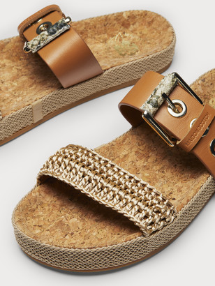 Scotch & Soda Yolin - Buckle Strap Slides | Women