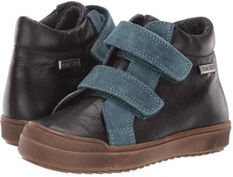 Naturino Idse VL AW19 (Toddler/Little Kid) (Blue) Boy's Shoes