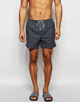 Brave Soul Polka Dot Swim Shorts In Navy