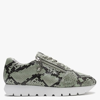 Kennel + Schmenger Rise Green Leather Reptile Cleated Sole Trainers