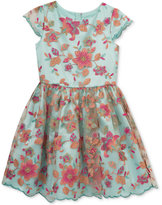 Rare Editions Embroidered Mesh Fit & Flare Dress, Toddler & Little Girls (2T-6X)