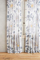 Anthropologie Catamarca Curtain