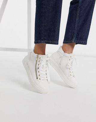 Aldo Harleigh hitop sneaker with zip detail