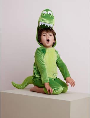 Disney George Toy Story Rex Fancy Dress Costume