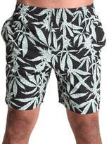 Element hemp collection shorts