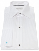 Self Striped Dress Shirt
