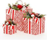 Southern Living Homestead Holidays Collection LED Present Holiday Decor