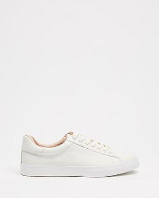 Mollini Session Sneakers