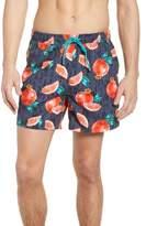 BOSS Threadfin Pomegranate Swim Trunks