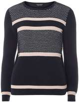 Dorothy Perkins Navy and Pink Ottoman Stripe jumper