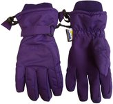 N'Ice Caps TM N'Ice Caps Adults Unisex Extreme Cold Weather 80 Gram Thinsulate Winter Ski Gloves