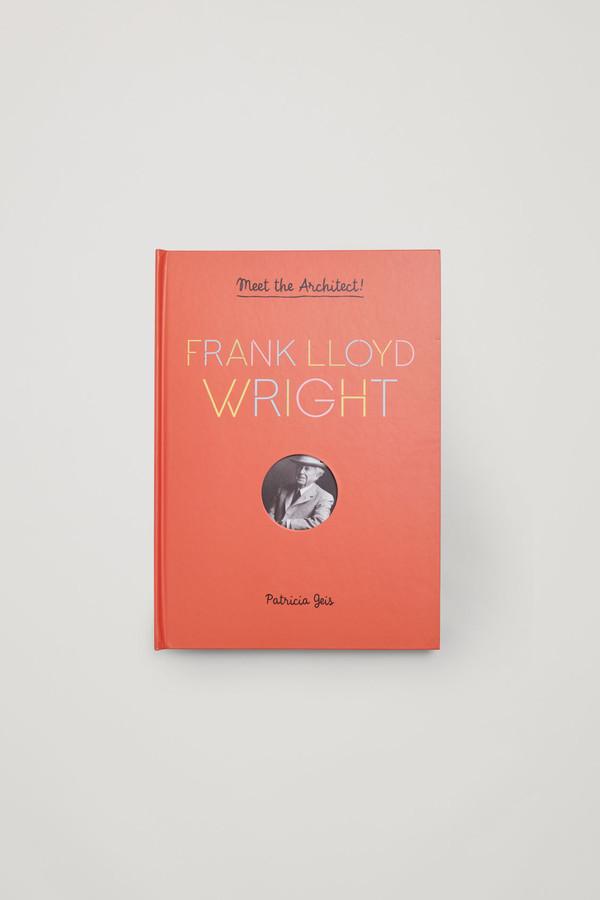 Frank Lloyd Wright Meet The Architect