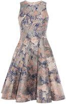 Coast Blair Marble Jacquard Dress
