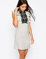Asos Structured Frill Sleeve Lace Panel Dress
