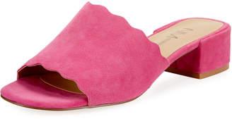 Neiman Marcus Howie Low-Heel Suede Slide Sandals, Fuchsia