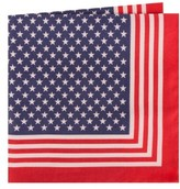 Ted Baker Men's Stars & Stripes Cotton & Silk Pocket Square