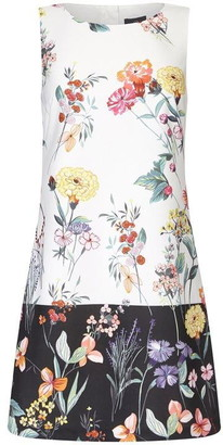 Adrianna Papell Garden Boarder Shift Dress