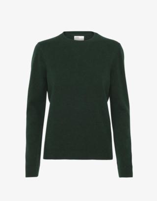 Colorful Standard - Merino Wool Crew - Hunter Green - wool | green | L . - Green/Green
