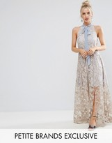 True Decadence Petite Halter Neck Maxi Dress In Allover Floral Embroidery